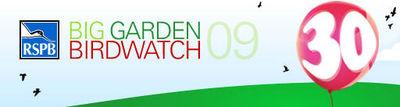 RSPB birdwatch