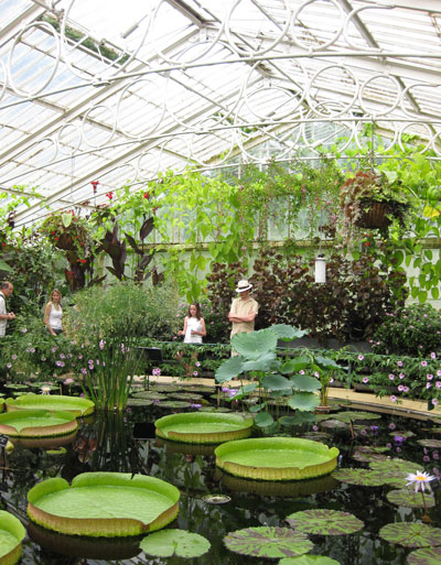 Kew-Waterlily-House