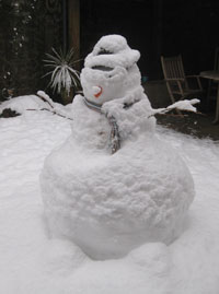 Snowman-11-Jan