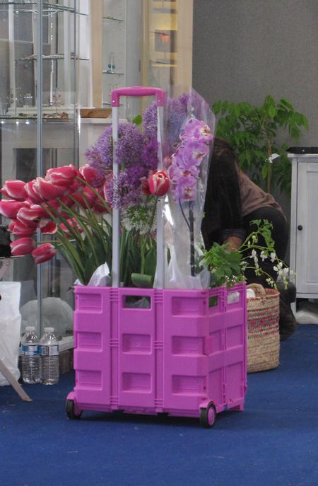 Malvern-pink-trolley